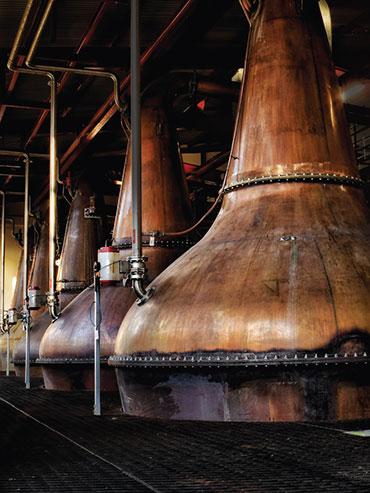 Portrait picture of whisky stills
