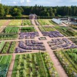 Another picture of Gordon Castle walled garden