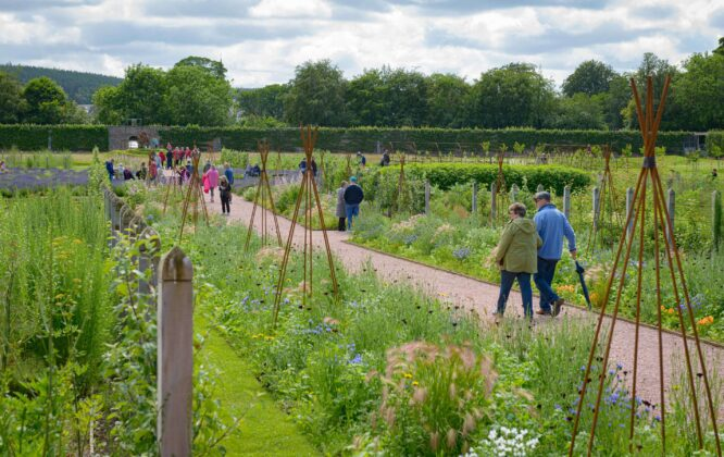 Picture of Gordon Castle garden