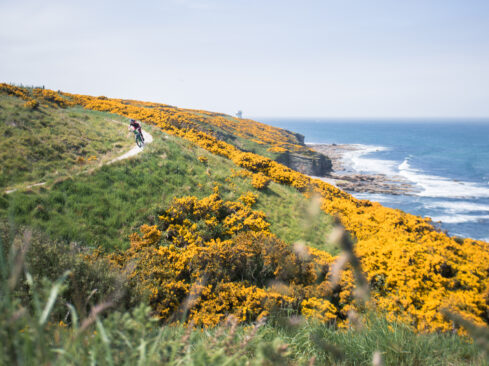Picture of cyclist next to Moray Coast