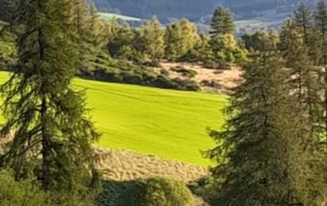 Picture of Dufftown golf club