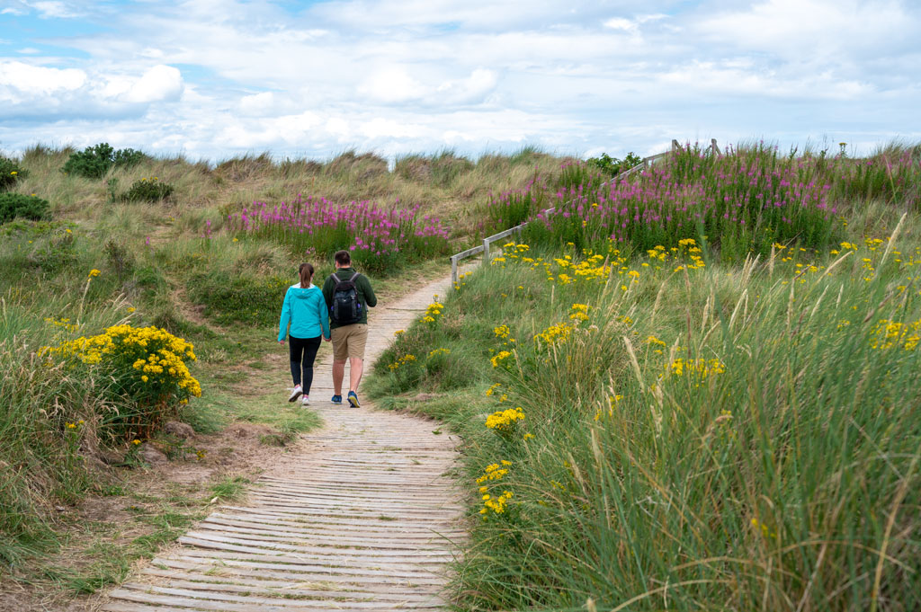 Picture of people on Findhorn walk