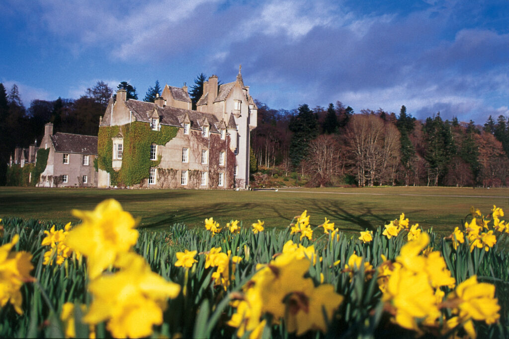 Ballindalloch Castle with Daffodils