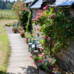 Mossyards Holiday Cottages